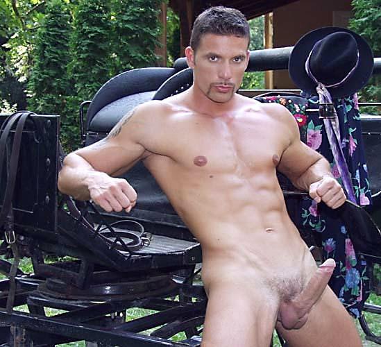 Sex swing positions